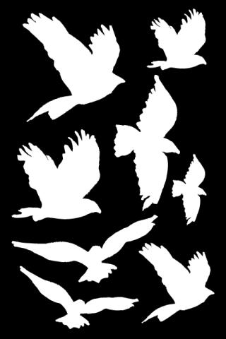 MDS52418_Flying-Birds-Masks